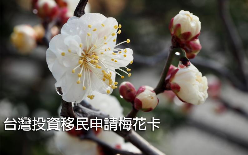 台灣投資移民申請梅花卡